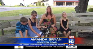Bear adoption Fox 16 News